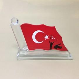 Türk Bayrağı KP 377